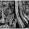 """Big Cypress - 20x30"""""""