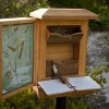 Yucca Shrine Box
