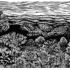 "Elk Mountain - 14x17"""