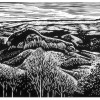 Looking Glass Mountain -14x17