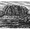 """Jocassee Lake II - 4x9"""""""