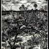 """Rosemary Hill - 17x14"""""""