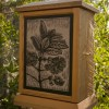 Pygmy Fringe Tree Shrine Box